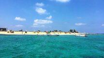 جزيرة الأرانب في طرابلس